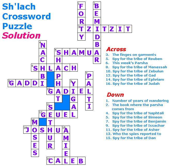Akhlah The Jewish Children S Learning Network Sh Lach Puzzle